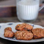 יומן מהתנור : עוגיות שוקולד וצימוקי דובדבנים